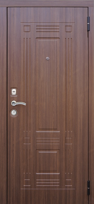Правительство где купить металлическую дверь в рубцовске завод выпустил